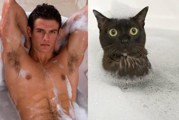 Γατάκια και Άνδρες