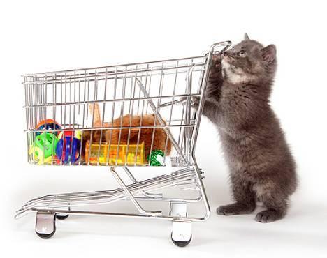 Ψωνίστε από online pet shop για όλα τα τετράποδα και όχι μόνο κατοικίδια
