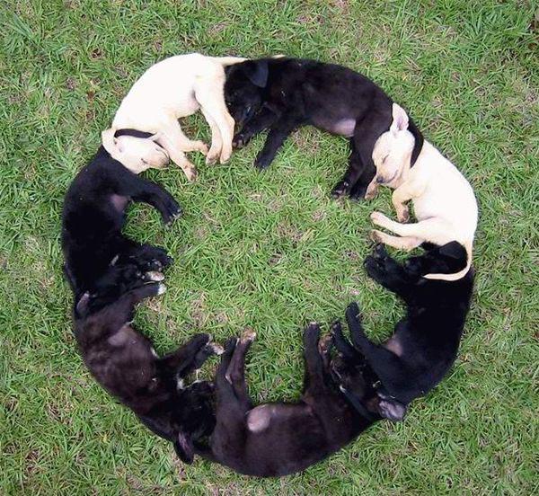 Ο κύκλος του ύπνου