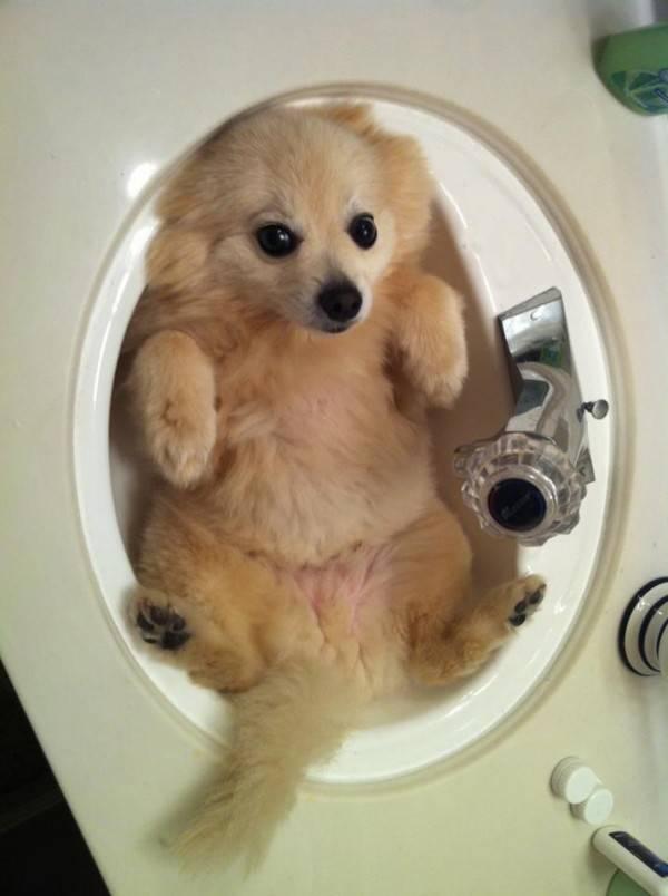 Ωρα για μπάνιο