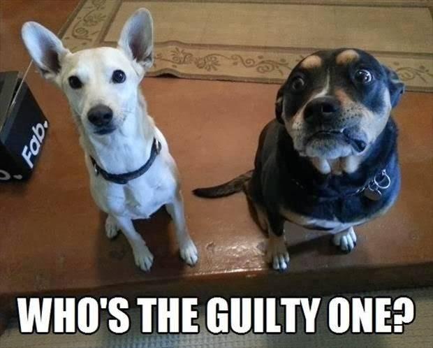 Βρές τον ένοχο