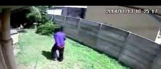 Burglar Escapes Savage Dog Attack! (Original)