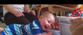 """""""Babies Laughing at Cats Compilation"""" 