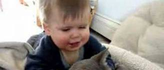 Baby and his Cat
